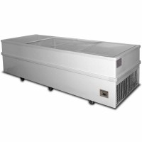2500mm Jumbo Sliding Glass Chest Freezers